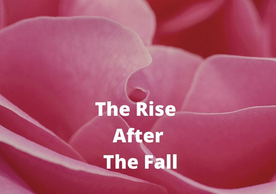 The Rise After The Fall